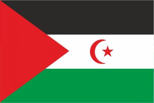 Флаг Сахарской Арабской Демократической Республики