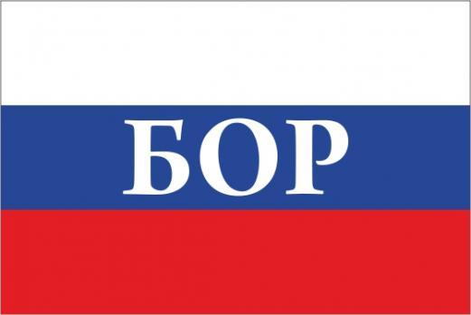 Флаг России с названием города Бор