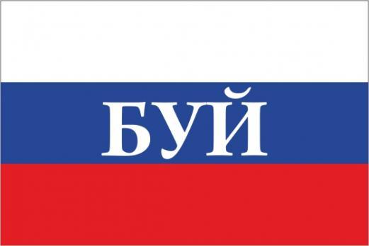 Флаг России с названием города Буй