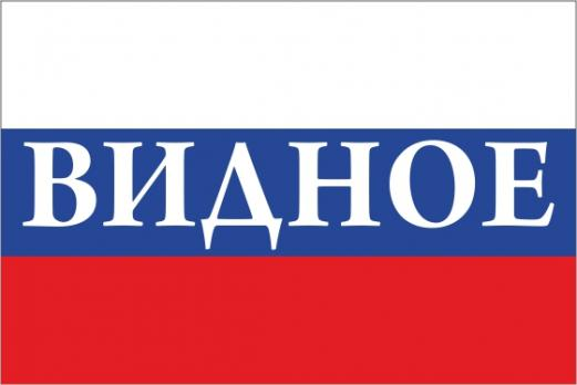 Флаг России с названием города Видное