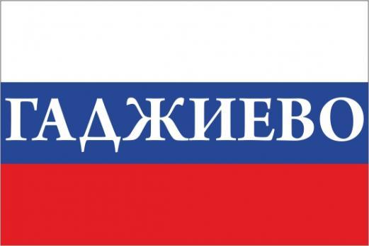 Флаг России с названием города ГАджиево