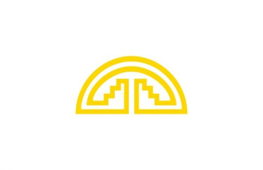 Флаг организации Андское сообщество