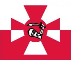 Флаг организации Гюйс ВМФ Польши