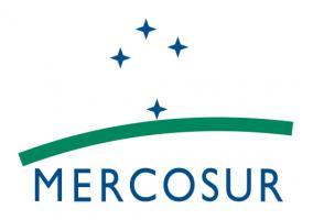Флаг организации Меркосур ( общий рынок стран Южной Америки)