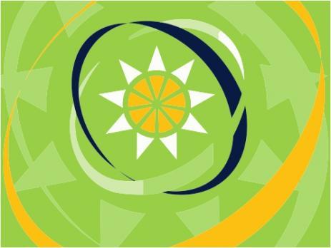 Флаг организации Организация Восточно-карибских государств