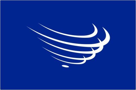 Флаг Организации Региональная политическая и экономическая организация государств Южной Америки2