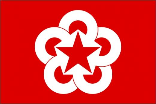 Флаг Организации Совет экономической взаимопомощи(СЭВ)