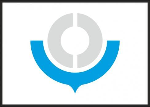 Флаг Организации Таможенный Союз