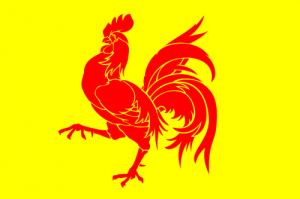 Флаг Валлонов