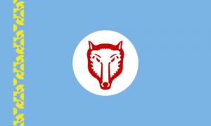 Флаг Гагаузов
