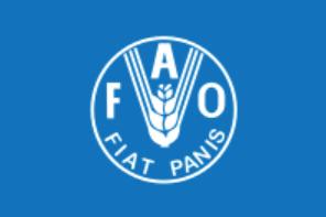 Флаг Всемирной продовольственной организации (ФАО)