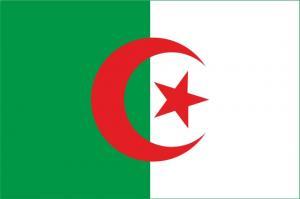 Флаг Алжира двусторонний блэкаут
