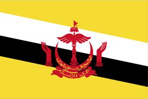 Флаг Брунея двухсторонний