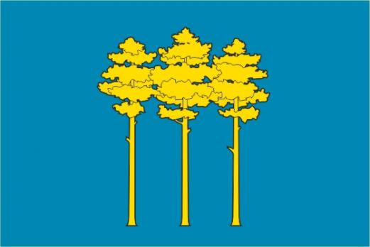 Флаг Димитровграда