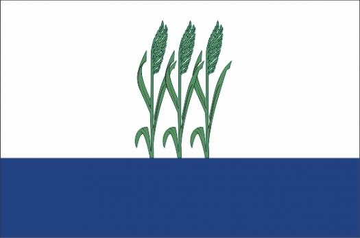 Флаг Камышина