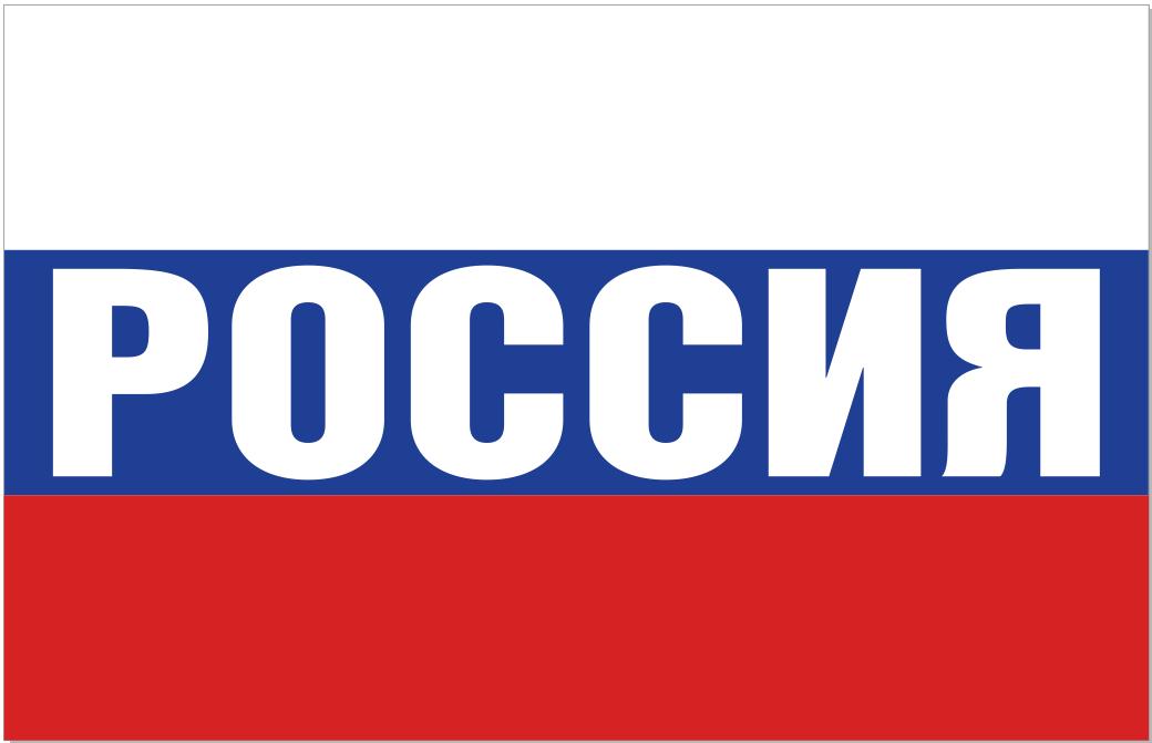 Большой Флаг России на стадион