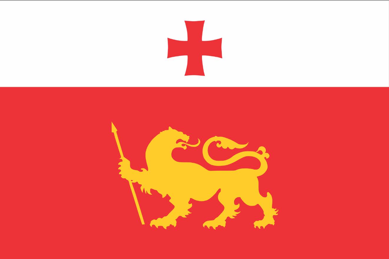 Флаг Дманиси