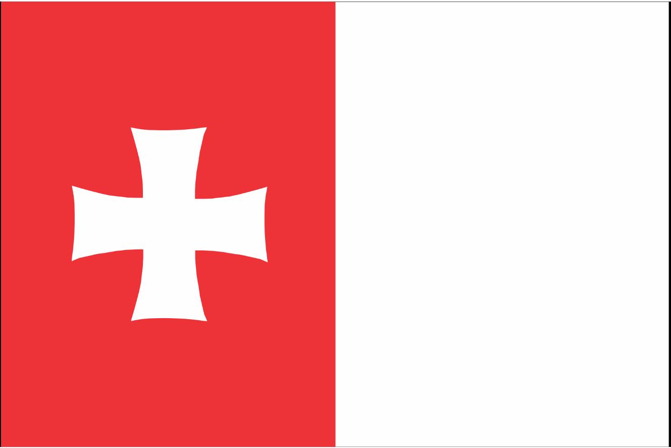 Флаг Рустави