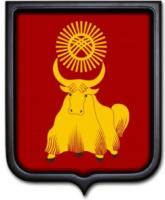 Герб Кызыла 35х43 см