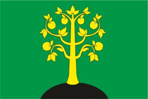 Флаг Нагатино-Садавников(район г. Москва)