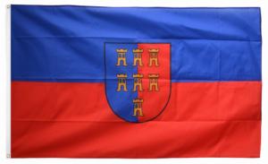 Флаг Трансильванских саксов 90x135 см