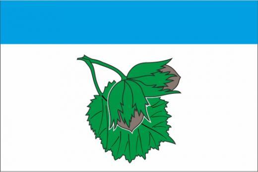 Флаг Орехово-Борисово Северное(район г. Москва)