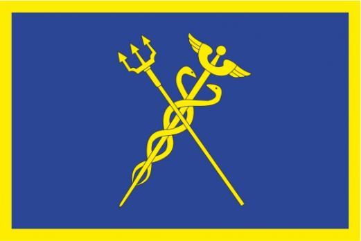 Флаг Строгино(район г. Москвы)