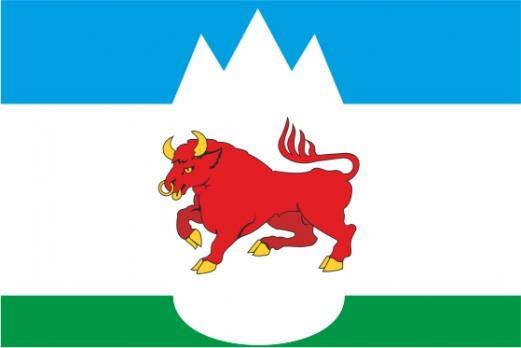 Флаг Сухого Лога