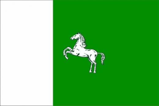 Флаг Томска
