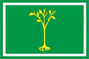 Флаг  Центрального Чертаново(район г. Москвы)