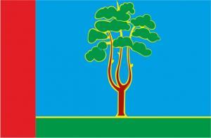 Флаг  Черноголовки