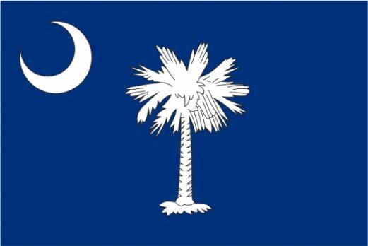 Флаг штата Южная Каролина (США)