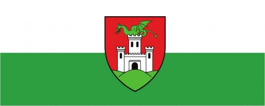 Флаг города Любляна